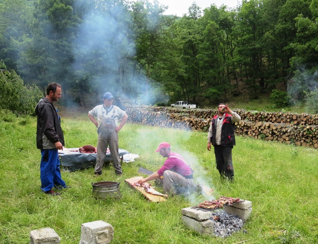 Barbecue with Albanian loggers
