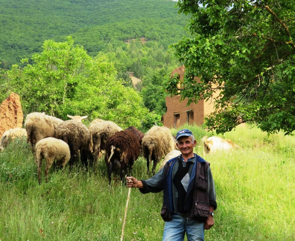 Shepherd, Northern Greece
