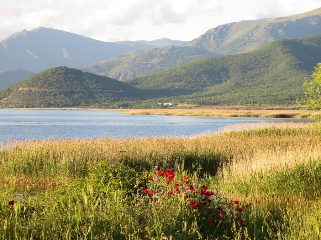 Campsite view - Lake Prespa